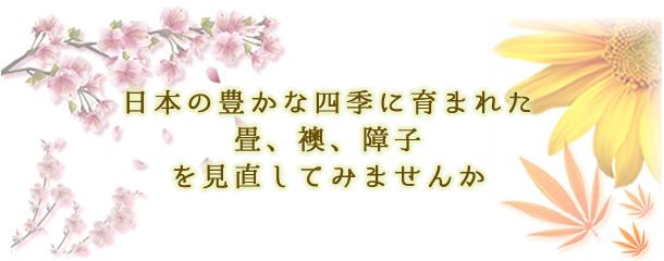 日本の豊かな四季に育まれた畳、襖、障子を見直してみませんか【株式会社建和】
